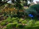 ogrod-bylinowy-3