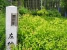 latarnia-japonska